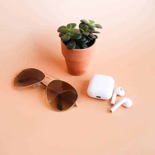 sunglasses, a plant, and headphones