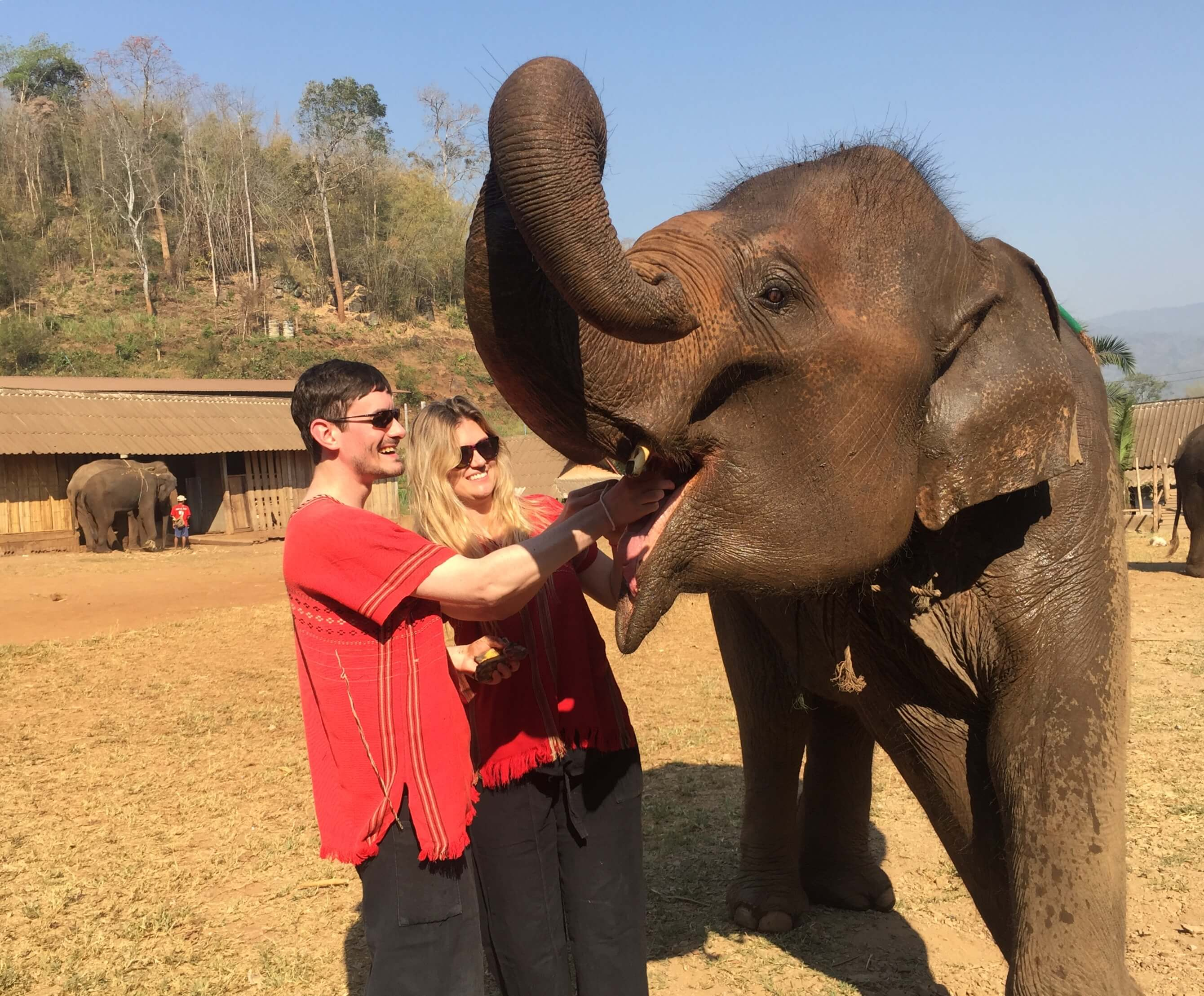 2 people feeding an elephant