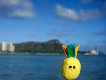 Hawaii Travel Healthcare Assignment: Is it for Me?