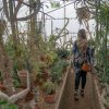 a women walking through a greenhouse