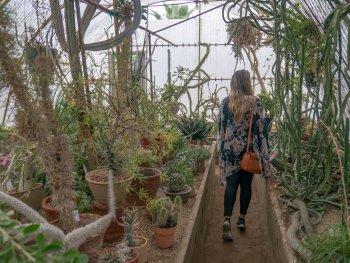 a women walking through a greenhouse