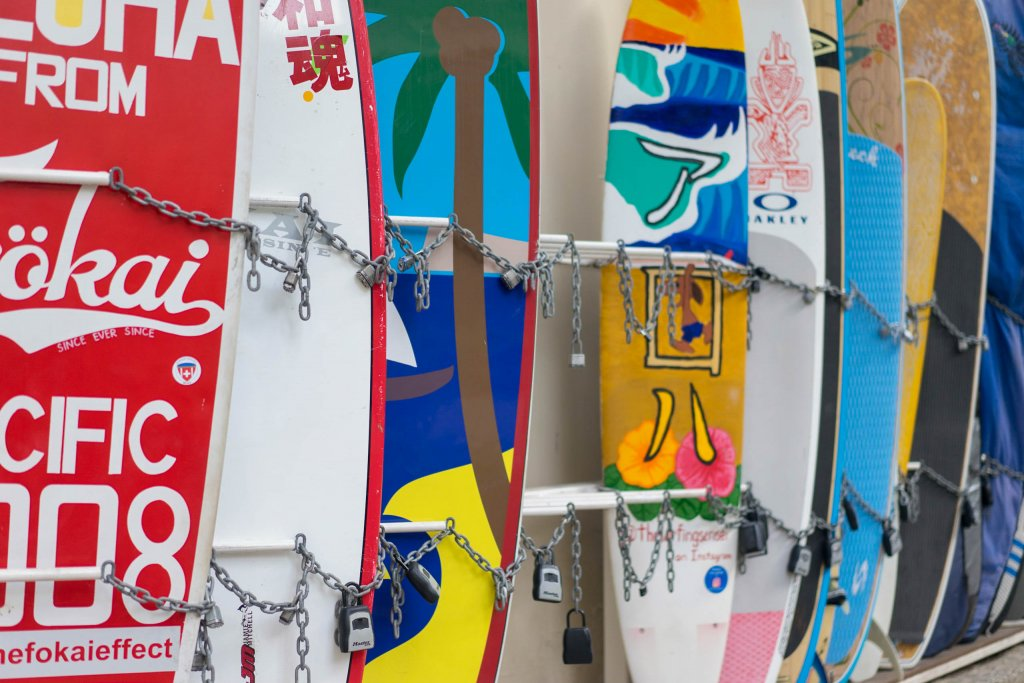 picture of surf boards